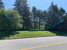 Lot for sale in Mont-Laurier, Laurentides, Rue  Taché, 23568228 - Centris.ca