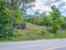 Terrain à vendre à Cantley, Outaouais, Chemin  Denis, 23674532 - Centris.ca