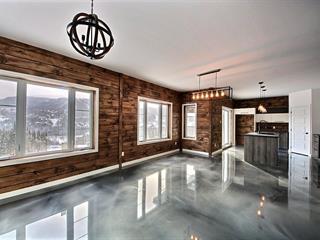 Condo à vendre à Saint-David-de-Falardeau, Saguenay/Lac-Saint-Jean, 207, Rue du Massif, 25264636 - Centris.ca