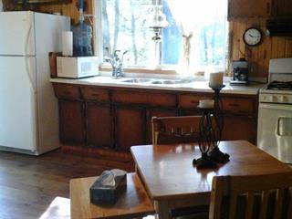 Maison à vendre à Ripon, Outaouais, 20, Chemin  Binet, 17823340 - Centris.ca