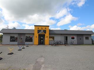 Bâtisse commerciale à vendre à Warwick, Centre-du-Québec, 1, Route  Saint-Albert, 24416736 - Centris.ca