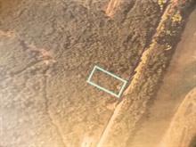 Terrain à vendre à Gaspé, Gaspésie/Îles-de-la-Madeleine, Montée de Pointe-Navarre, 18000031 - Centris.ca