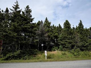 Lot for sale in Les Îles-de-la-Madeleine, Gaspésie/Îles-de-la-Madeleine, Chemin de la Montagne, 28755182 - Centris.ca