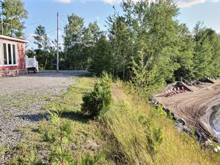 Maison à vendre à Rivière-Héva, Abitibi-Témiscamingue, 71, Rue du Pourvoyeur, 21532921 - Centris.ca