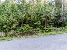 Terrain à vendre à Wentworth-Nord, Laurentides, Chemin du Lac-Richer, 12293293 - Centris.ca