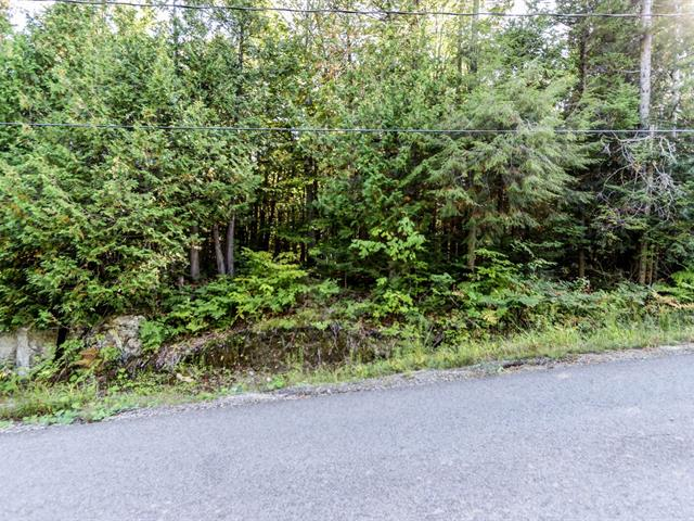 Lot for sale in Wentworth-Nord, Laurentides, Chemin du Lac-Richer, 12293293 - Centris.ca