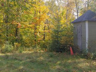 Lot for sale in Sainte-Anne-du-Lac, Laurentides, 26, Rue  Hogue, 9992057 - Centris.ca