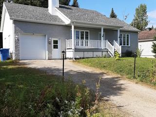 Maison à vendre à Saint-Donat (Lanaudière), Lanaudière, 446, Chemin du Domaine-R.-Lavoie, 15406287 - Centris.ca