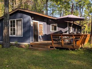 House for sale in Bristol, Outaouais, 19, Avenue  Edgewood, 20724124 - Centris.ca