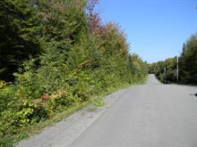 Terrain à vendre à Sainte-Anne-des-Lacs, Laurentides, Chemin  Paquin, 15040496 - Centris.ca