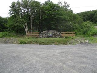Terrain à vendre à Saint-Étienne-de-Bolton, Estrie, 30, Allée du Panorama, 24306764 - Centris.ca