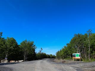 Lot for sale in Saint-Étienne-de-Bolton, Estrie, 21, Allée du Panorama, 27196476 - Centris.ca