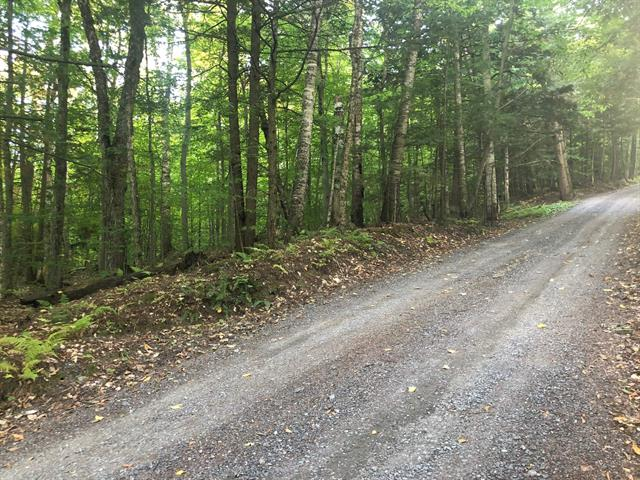 Land for sale in Potton, Estrie, Chemin  Mountain House, 19474908 - Centris.ca