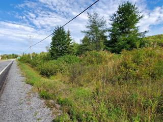 Lot for sale in Gaspé, Gaspésie/Îles-de-la-Madeleine, 1607, boulevard de Forillon, 17999649 - Centris.ca