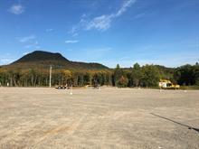 Terre à vendre à Lac-Supérieur, Laurentides, Chemin du Mont-la-Tuque, 24155418 - Centris.ca