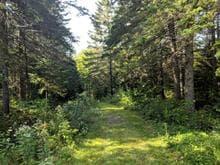 Land for sale in Saint-Romain, Estrie, Chemin du Portage, 9909315 - Centris.ca