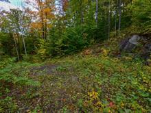Terrain à vendre à Chénéville, Outaouais, Chemin du Domaine-Familial, 22570432 - Centris.ca