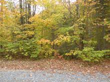 Terrain à vendre à Wentworth-Nord, Laurentides, Chemin du Lac-La Rivière, 21858232 - Centris.ca