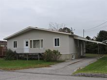 Maison à vendre à Ferme-Neuve, Laurentides, 166, 7e Avenue, 20645922 - Centris.ca