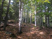 Terrain à vendre à Sainte-Adèle, Laurentides, boulevard  Mont-Rolland, 12370815 - Centris.ca