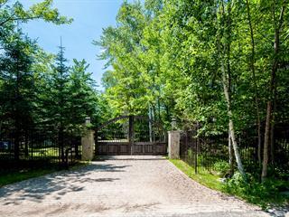 Maison à louer à Mont-Tremblant, Laurentides, 112, Chemin de l'Ermite, 10408158 - Centris.ca