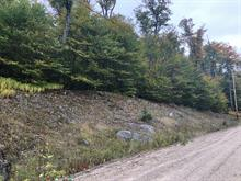 Lot for sale in Lac-Tremblant-Nord, Laurentides, Chemin des Rondins, 28461613 - Centris.ca