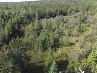 Terrain à vendre à Adstock, Chaudière-Appalaches, Z, Route du Lac-du-Huit, 13656867 - Centris.ca