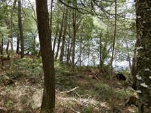 Terrain à vendre à Harrington, Laurentides, Chemin des Mésanges, 9663365 - Centris.ca