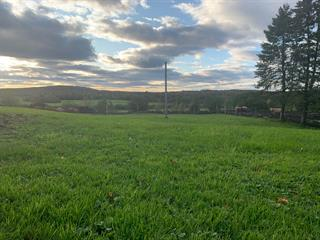 Land for sale in Valcourt - Canton, Estrie, 7096Z, Chemin  Benoit, 15183973 - Centris.ca