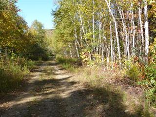 Lot for sale in Baie-Saint-Paul, Capitale-Nationale, 252, boulevard  Monseigneur-De Laval, 13817190 - Centris.ca