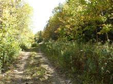 Terrain à vendre à Baie-Saint-Paul, Capitale-Nationale, 249, boulevard  Monseigneur-De Laval, 27549801 - Centris.ca