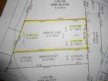 Terrain à vendre à Trécesson, Abitibi-Témiscamingue, Route  111, 24315317 - Centris.ca