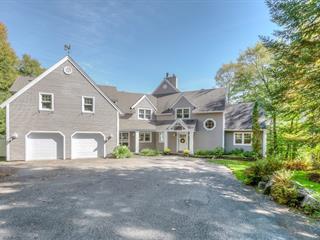 Maison à vendre à Sainte-Anne-des-Lacs, Laurentides, 17, Chemin des Ocelots, 28916866 - Centris.ca