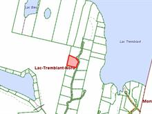 Lot for sale in Lac-Tremblant-Nord, Laurentides, Chemin des Rondins, 11488889 - Centris.ca