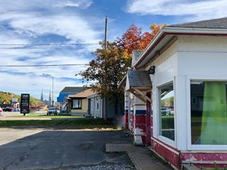 Commercial building for sale in Sainte-Anne-de-Beaupré, Capitale-Nationale, 9574, boulevard  Sainte-Anne, 27594551 - Centris.ca