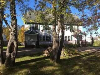 Maison à vendre à Baie-Trinité, Côte-Nord, 14, Rue de la Baie, 25844678 - Centris.ca