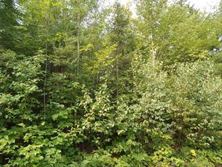 Lot for sale in Chertsey, Lanaudière, Avenue  Morin, 22555776 - Centris.ca