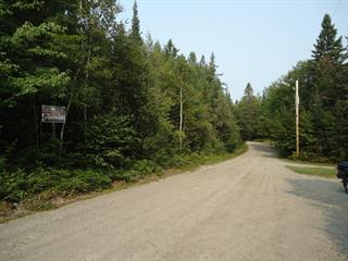 Lot for sale in Chertsey, Lanaudière, Avenue  Morin, 22555776 - Centris.ca