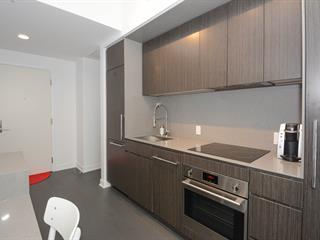 Condo à vendre à Montréal (Ville-Marie), Montréal (Île), 1288, Avenue des Canadiens-de-Montréal, app. 2904, 21171792 - Centris.ca