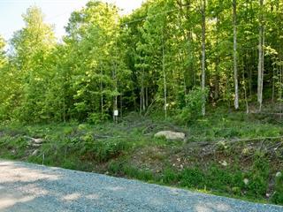 Terrain à vendre à Saint-Étienne-de-Bolton, Estrie, Rue de la Serpentine, 20011017 - Centris.ca