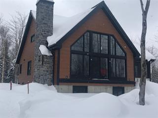 Maison à vendre à Sainte-Cécile-de-Whitton, Estrie, 369, Chemin du Lac-des-Trois-Milles Sud, 26081057 - Centris.ca