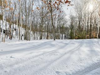 Terrain à vendre à Sainte-Marcelline-de-Kildare, Lanaudière, 3e rue du Lac-Léon, 20044635 - Centris.ca