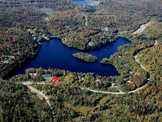 Lot for sale in Saint-Gabriel-de-Brandon, Lanaudière, Chemin du Lac-Hamelin, 16746330 - Centris.ca