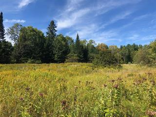 Lot for sale in Cantley, Outaouais, 60, Chemin  Sabourin, 26041975 - Centris.ca