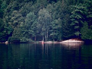 Lot for sale in Barkmere, Laurentides, 6337, Chemin du Lac-des-Écorces, 23982878 - Centris.ca
