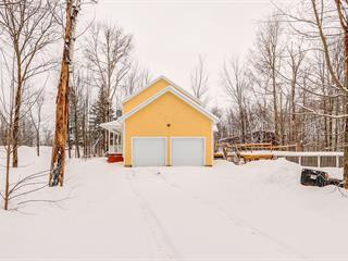 Maison à vendre à Pontiac, Outaouais, 135, Croissant  Lusk, 10546583 - Centris.ca