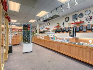 Commerce à vendre à Mascouche, Lanaudière, 3100, boulevard de Mascouche, local 04, 16482793 - Centris.ca