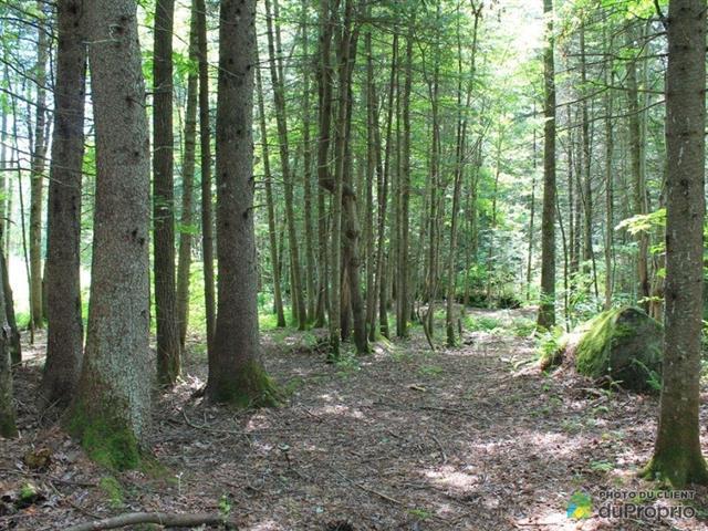Terrain à vendre à Sainte-Brigitte-de-Laval, Capitale-Nationale, 99, boulevard du Lac, 16464655 - Centris.ca