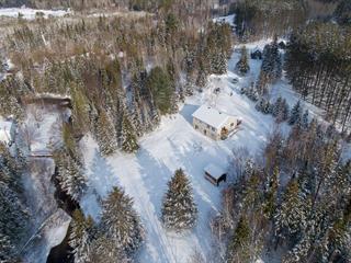 Maison à vendre à Amherst, Laurentides, 177, Chemin du Moulin, 21691819 - Centris.ca