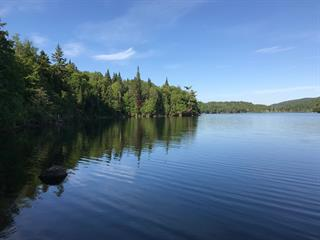 Lot for sale in Saint-Faustin/Lac-Carré, Laurentides, Chemin du Bord-de-l'Eau, 17817440 - Centris.ca